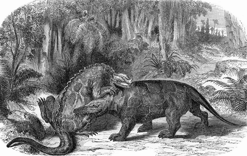 Next To The Megalosaurus Was An Iguanodon Sculpture Also Quadrupedal And For Several Decades This Stock Image Of World Dinosaurs