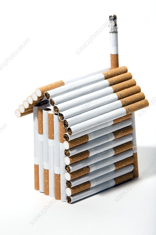 House made from cigarettes