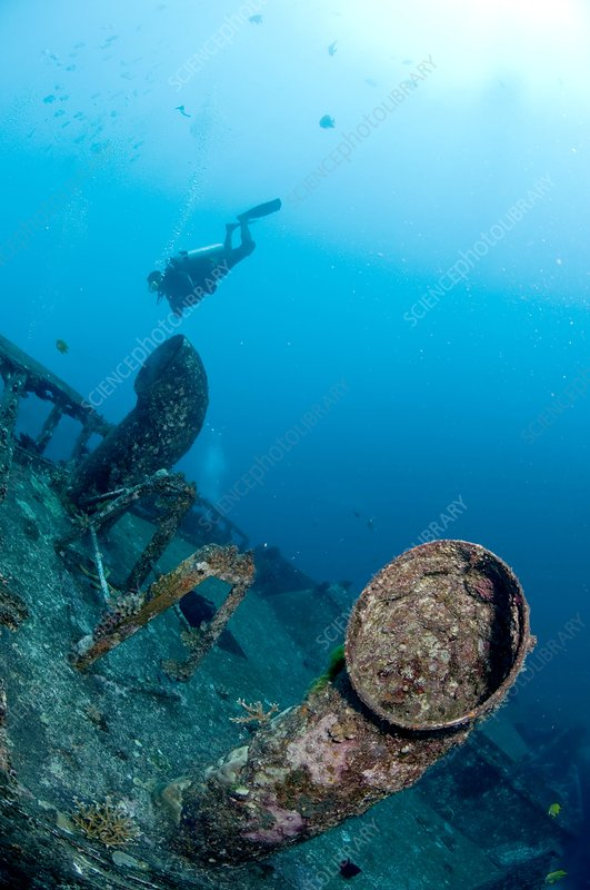Diver and wreck, Thailand