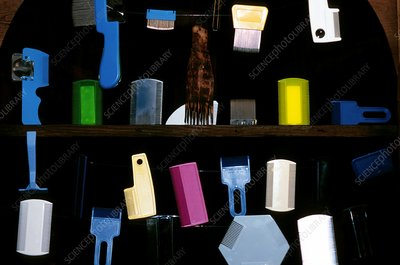 Lice comb collection