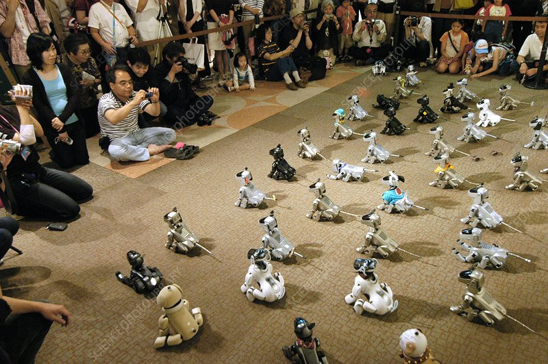 AIBO robot dog convention