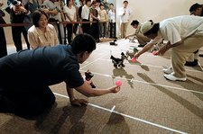 AIBO robot dog racing