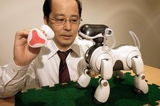 AIBO robot dog research