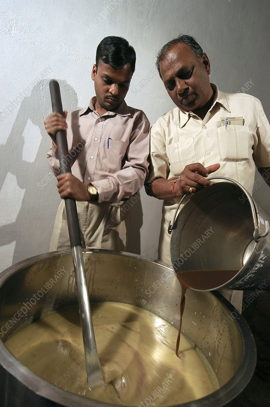 Preparing cow product remedies, India