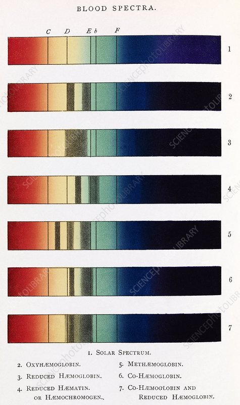Blood spectra, 19th century artwork