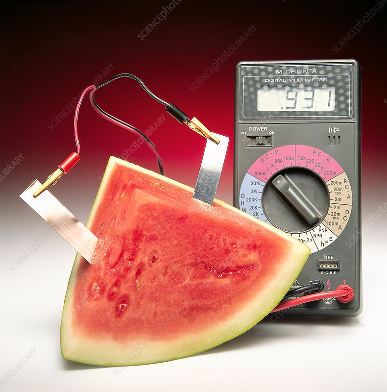 Voltaic Cell With Watermelon