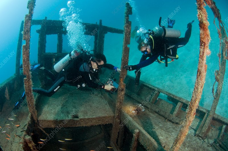 Shipwreck and scuba divers