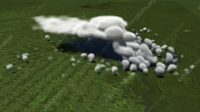 Convective cloud simulation