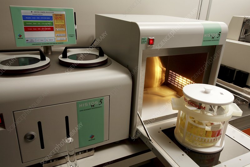 Microwave histology processor