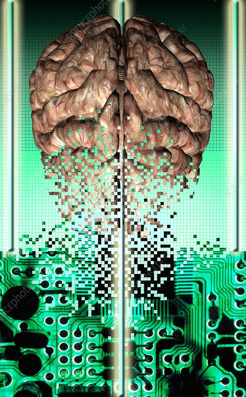 Circuit Brain Reusable : Circuit brain reusable does valproic acid cause