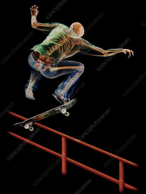 3D Anatomy of a Skateboarder