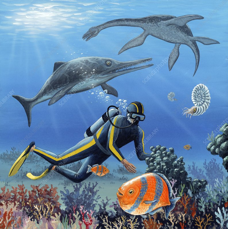 Diver and prehistoric life, artwork