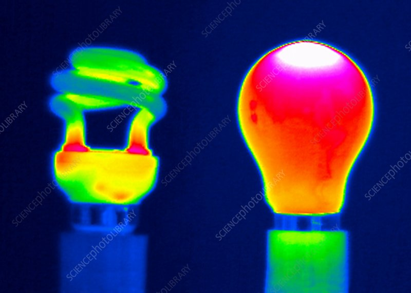 Comparing light bulbs, thermogram