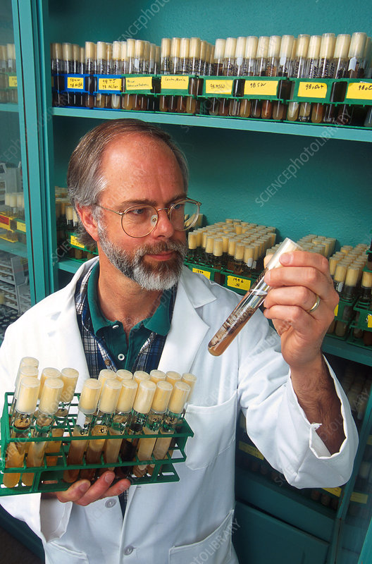 Plant Pathologist