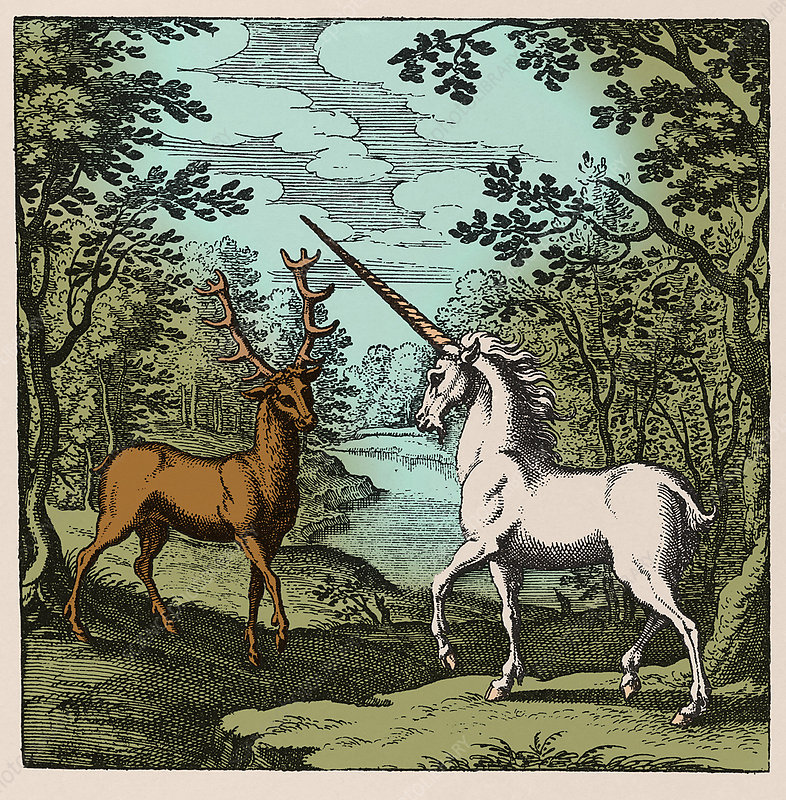 Stag meeting a unicorn