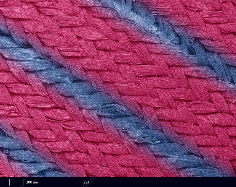 'SEM, Fastskin Fabric'
