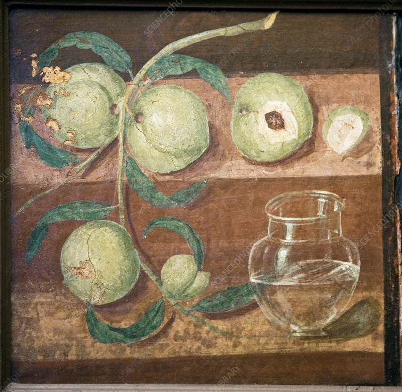 Peaches and a glass jug, Roman fresco