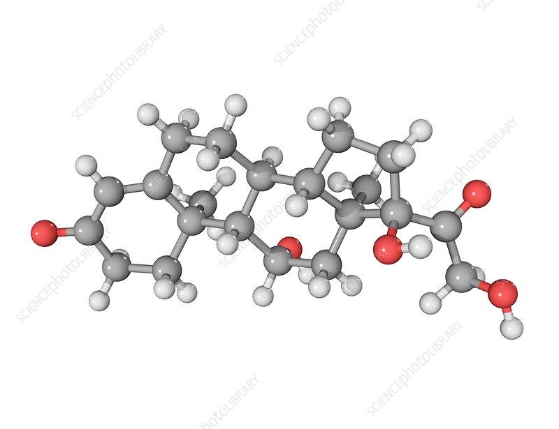 c21 steroid hormone