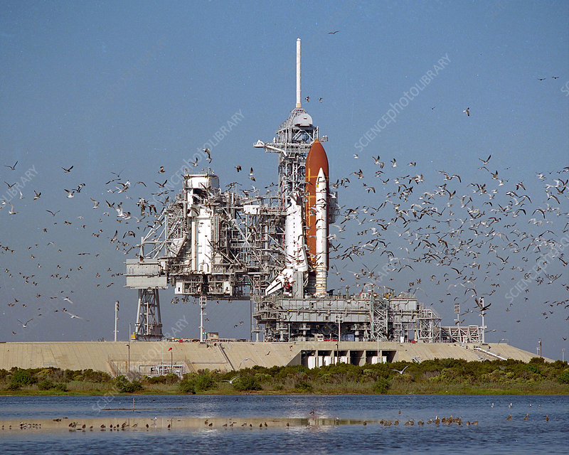 Atlantis on launchpad