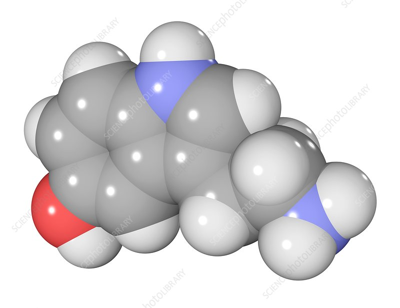 Serotonin neurotransmitter molecule