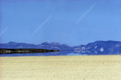 'Mirage, Black Rock Desert'