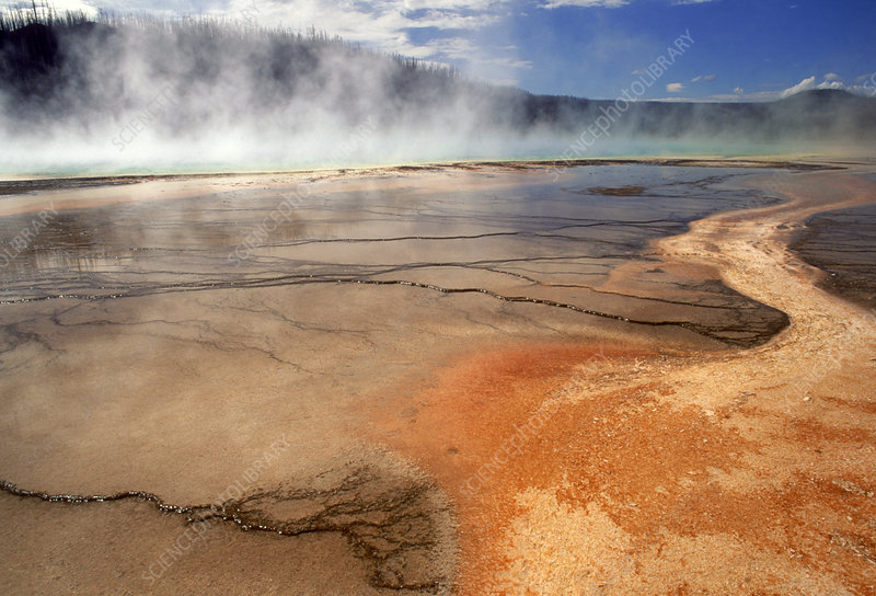 'Grand Prisimatic Spring, Yellowstone NP'