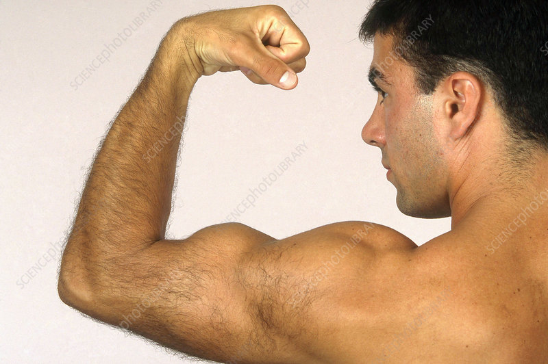 Man Flexing Bicep