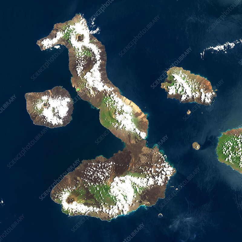 Galapagos Islands, satellite image
