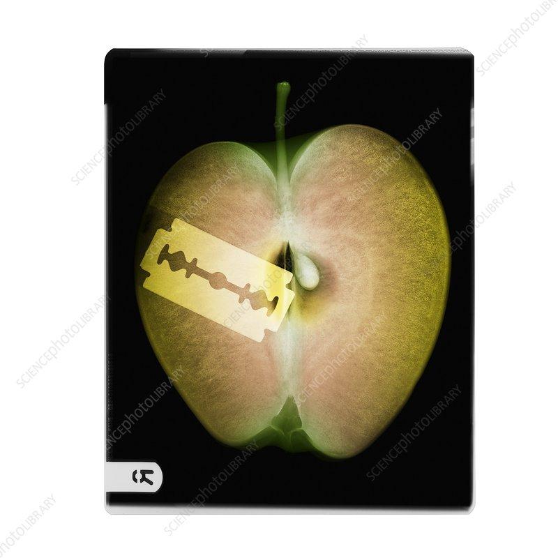 Apple and razor blade, coloured X-ray