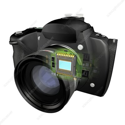 Digital camera and CCD chip, artwork