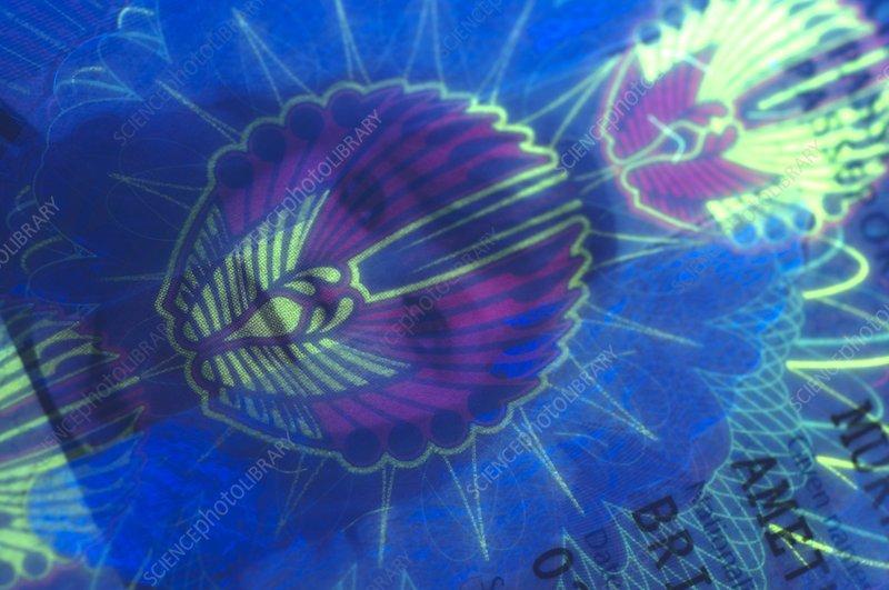 United Kingdom passport under UV light