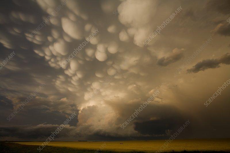 Mammatus clouds over fields, USA