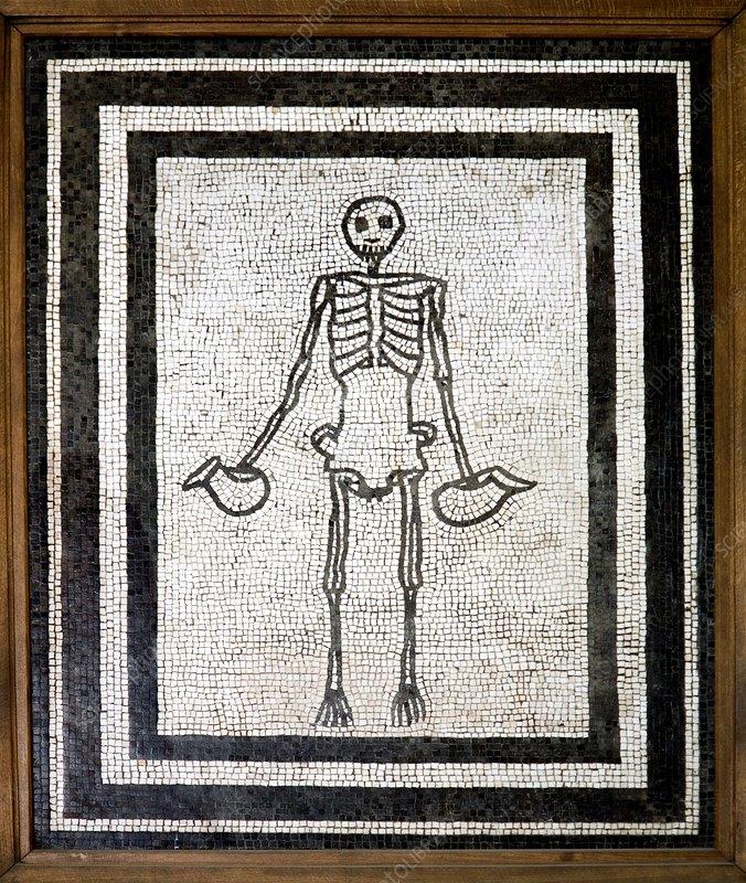 Roman memento mori mosaic