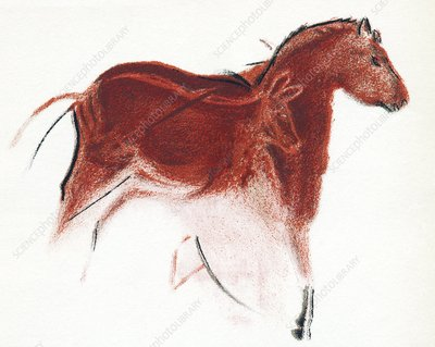 Cave painting of horse and hind, artwork