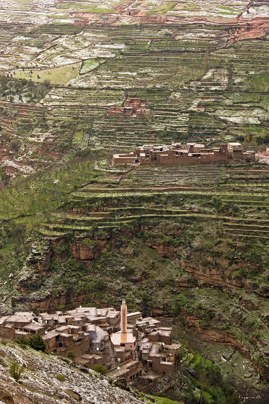 Terraced hillside in morocco stock image c003 6975 for Terrace farming model