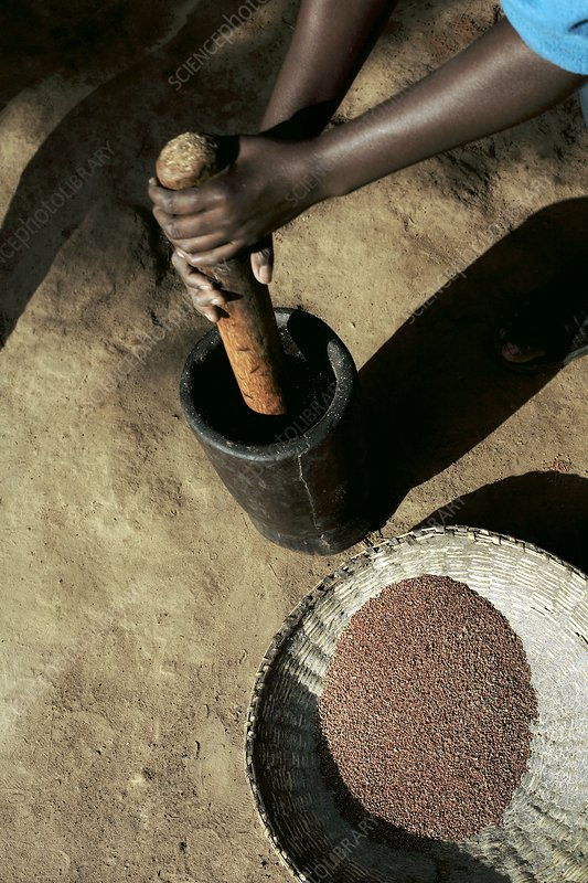 Milling of food, Uganda