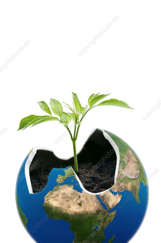 Environmental care, conceptual image