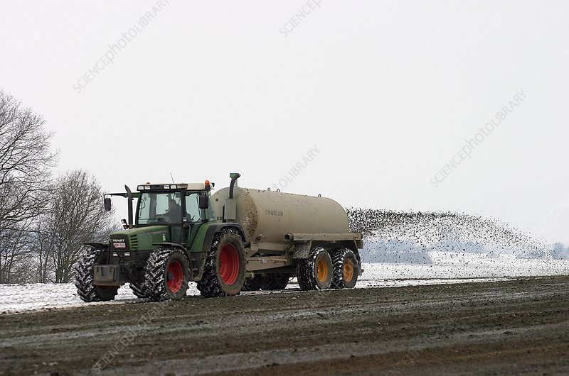 Fertilising fields in snow