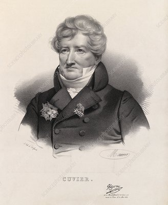 Georges, Baron Cuvier, French anatomist