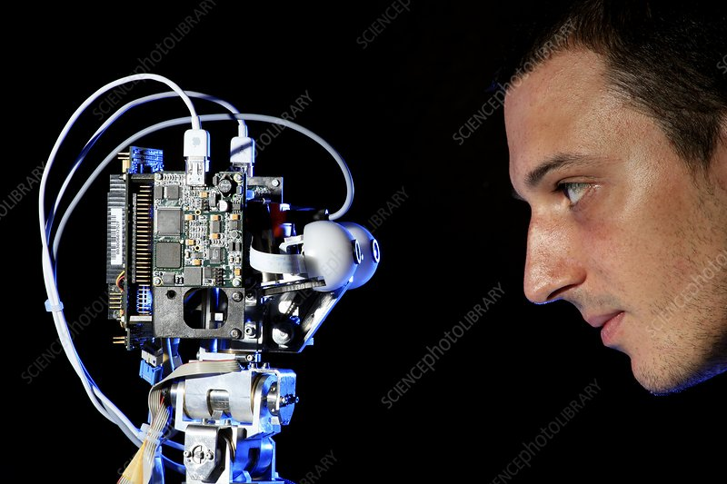 iCub robot and researcher