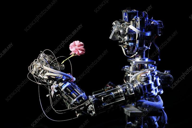 iCub robot holding a flower