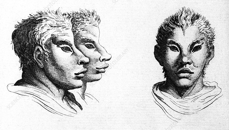 Charles le Brun's System on Physiognomy