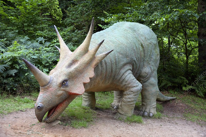 Model styracosaurus dinosaur