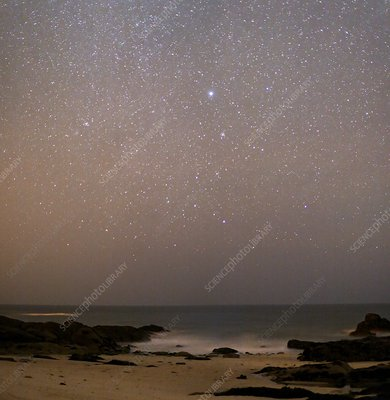 Sirius in Canis Major over a beach
