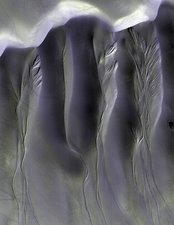 Gullies on martian sand dunes