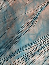 Gullies on a martian sand dune