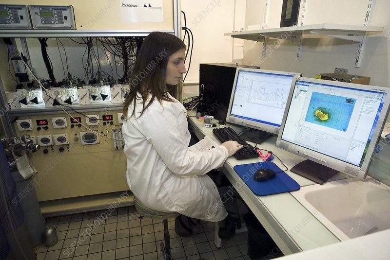 animal testing pictures. Pharmaceutical animal testing