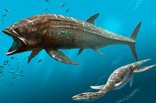 Leedsichthys prehistoric fish, artwork