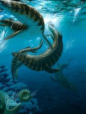Mosasaur extinct marine reptile, artwork