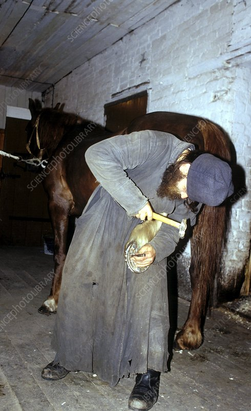 Russian monk shoeing a horse